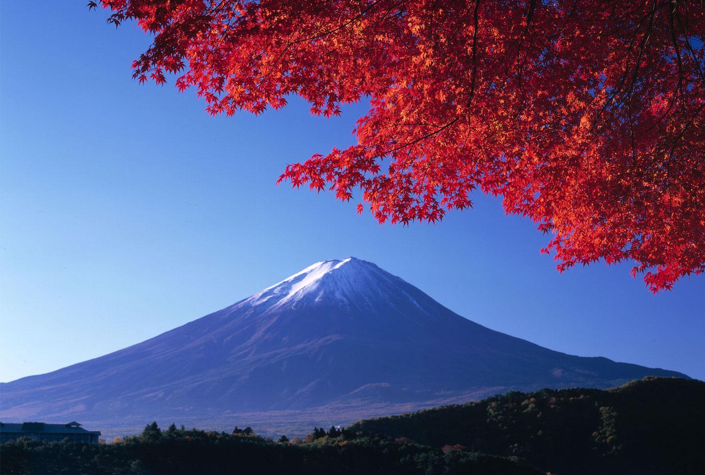 Auslandsaufenthalt Japan