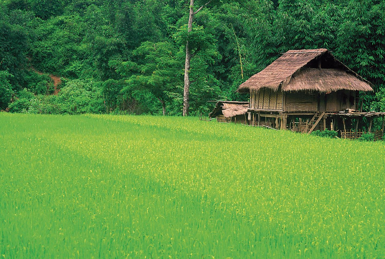 Auslandsaufenthalt Vietnam
