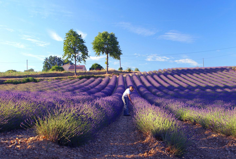 Auslandsaufenthalt Frankreich