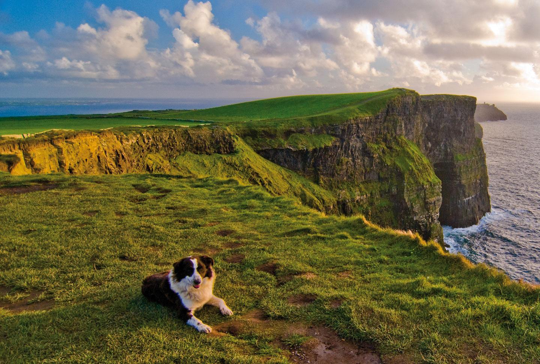Au Pair Irland