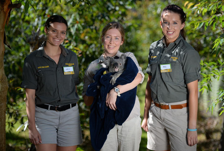 Australia Zoo-Projekt