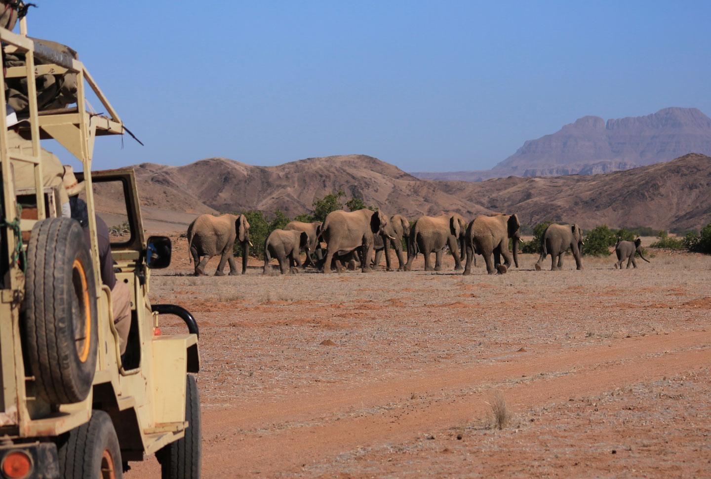 Freiwilligenarbeit Namibia