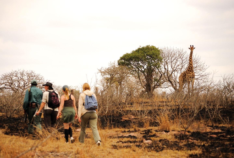 Freiwilligenarbeit Zululand