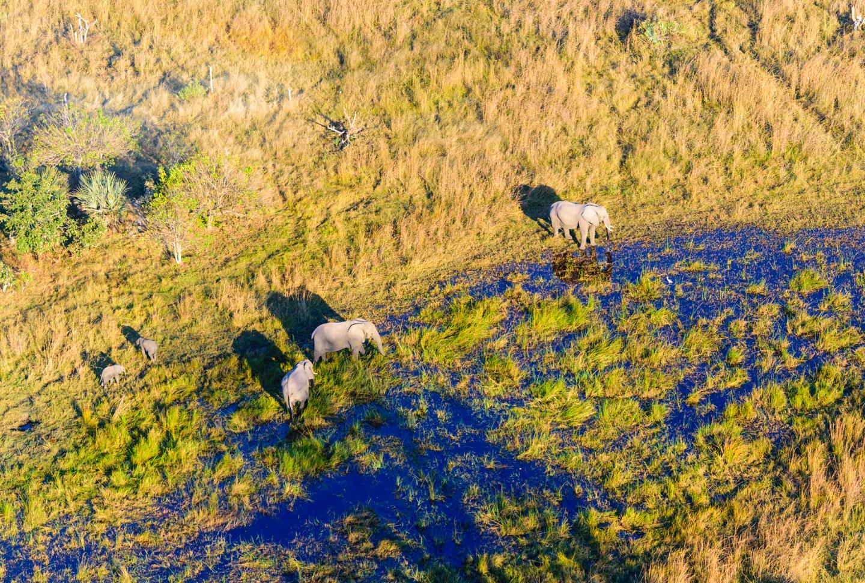Erlebnisreise Südliches Afrika