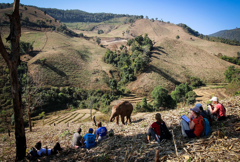 Erlebnisreisen Thailand