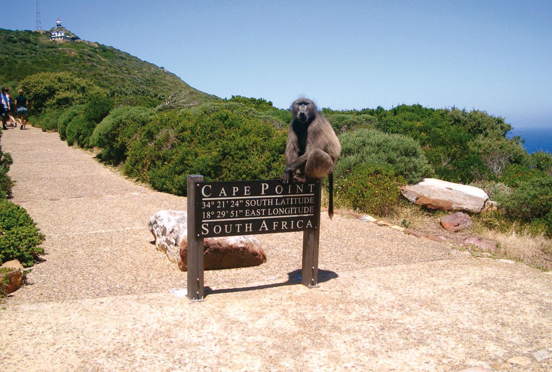 Sprachreisen Südafrika