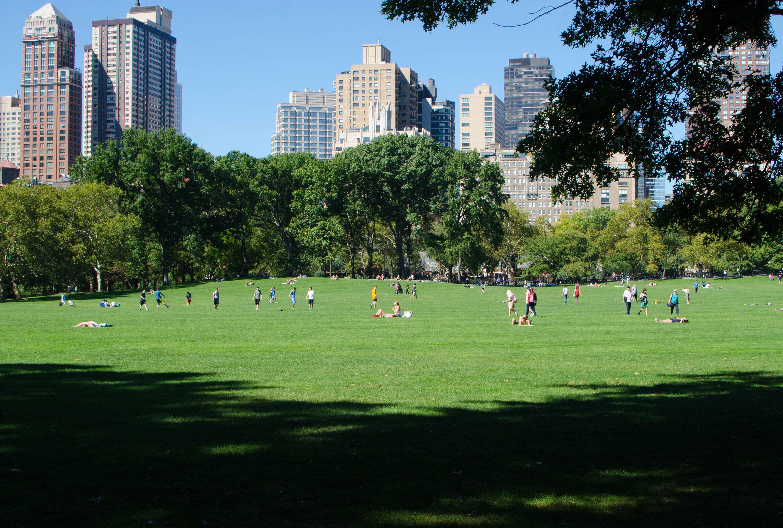 Sprachreisen New York Central Park