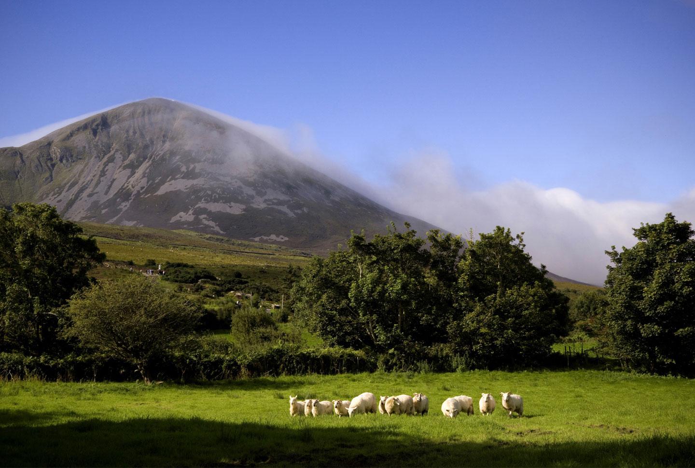 Farmarbeit Irland