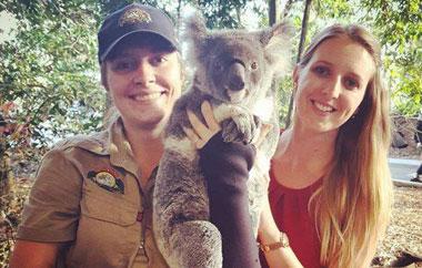 koala-projekt-australien-teaser