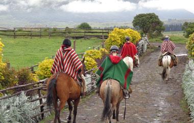 freiwilligenarbeit-ecuador-teaser-land