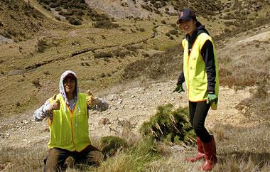 freiwilligenarbeit-neuseeland-teaser