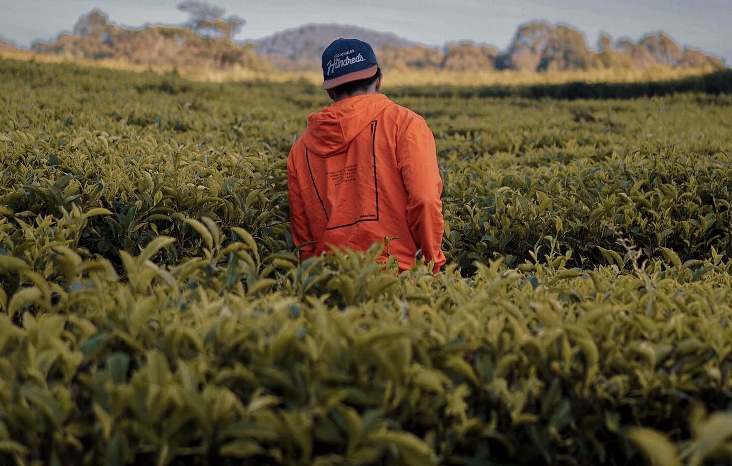 freiwilligenarbeit-ozeanien-teaser-neu