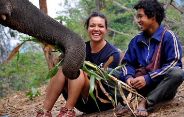 elefantenprojekt-thailand-teaser