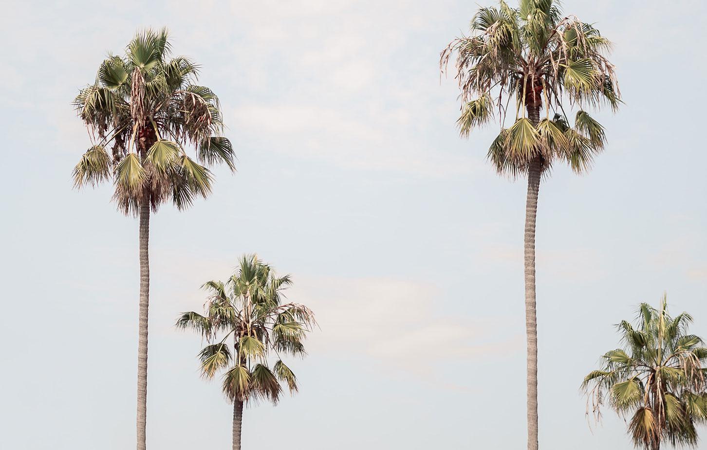 schuelersprachreisen-kalifornien-teaser-neu